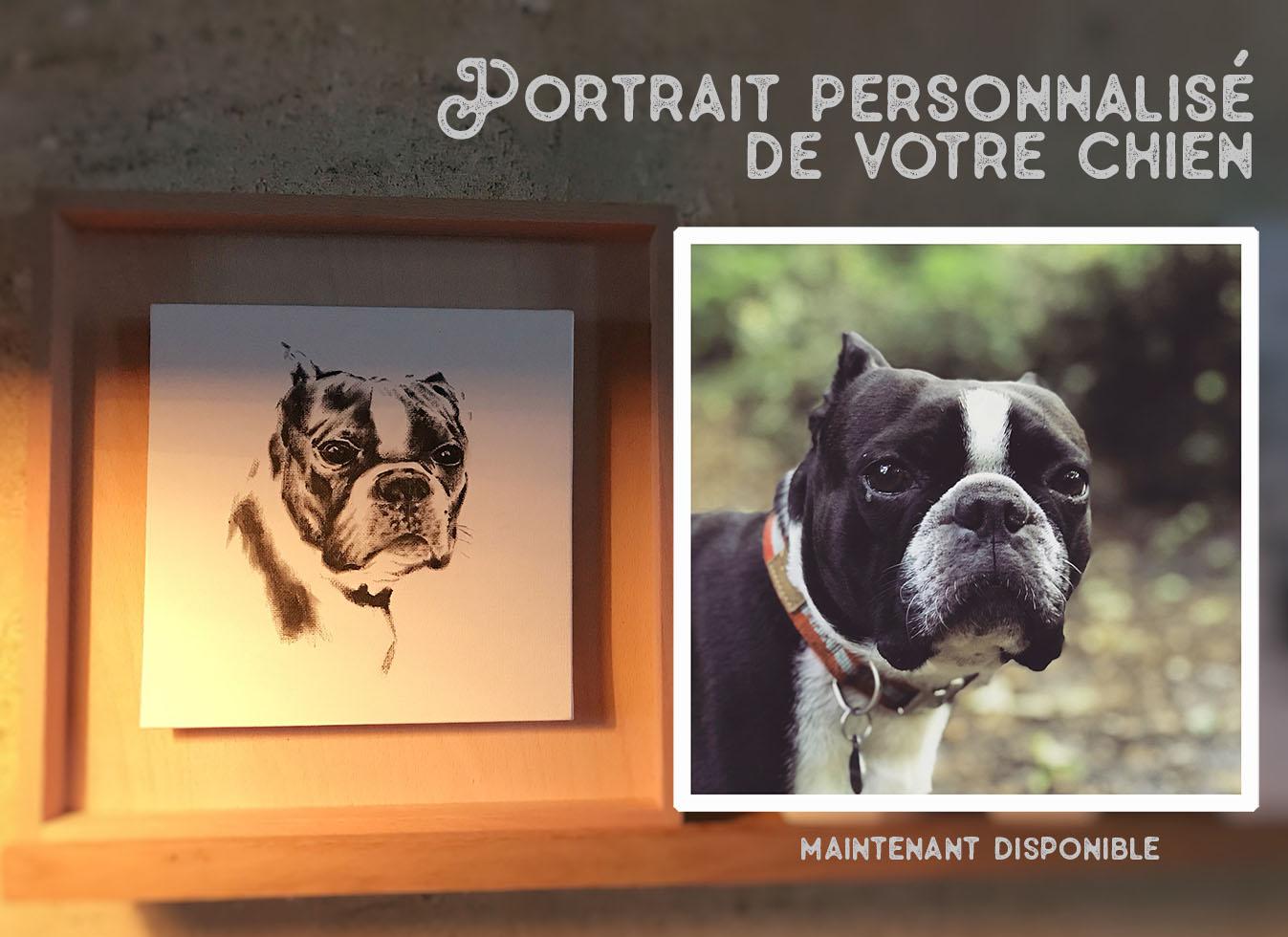 le parallèle entre un portrait dessiné et une photo du chien