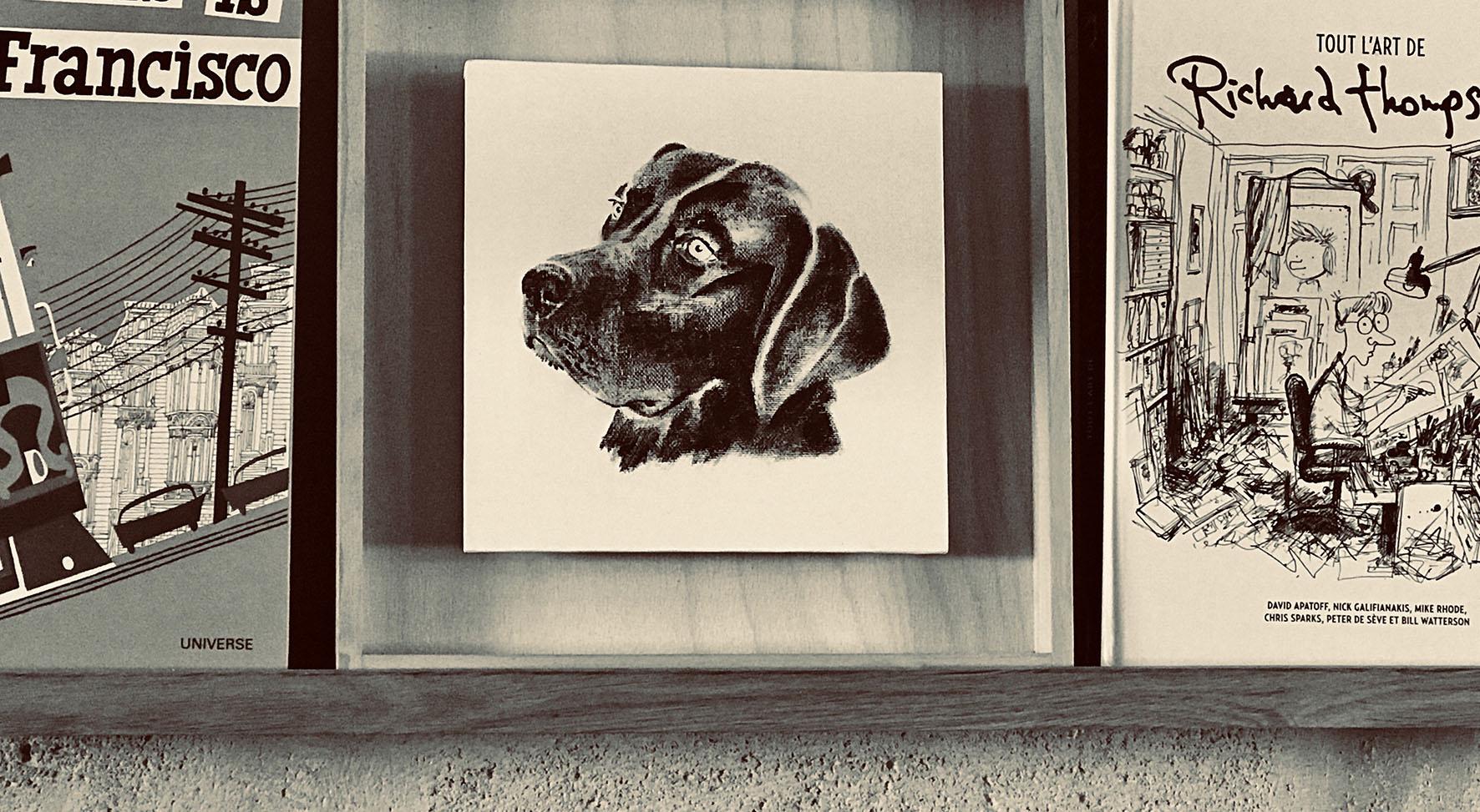photo d'un portrait d'un labrador sur étagère