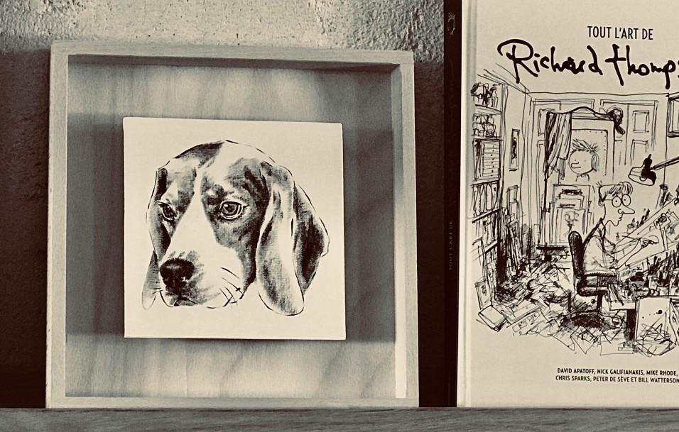 photo d'un portrait d'un beagle sur étagère