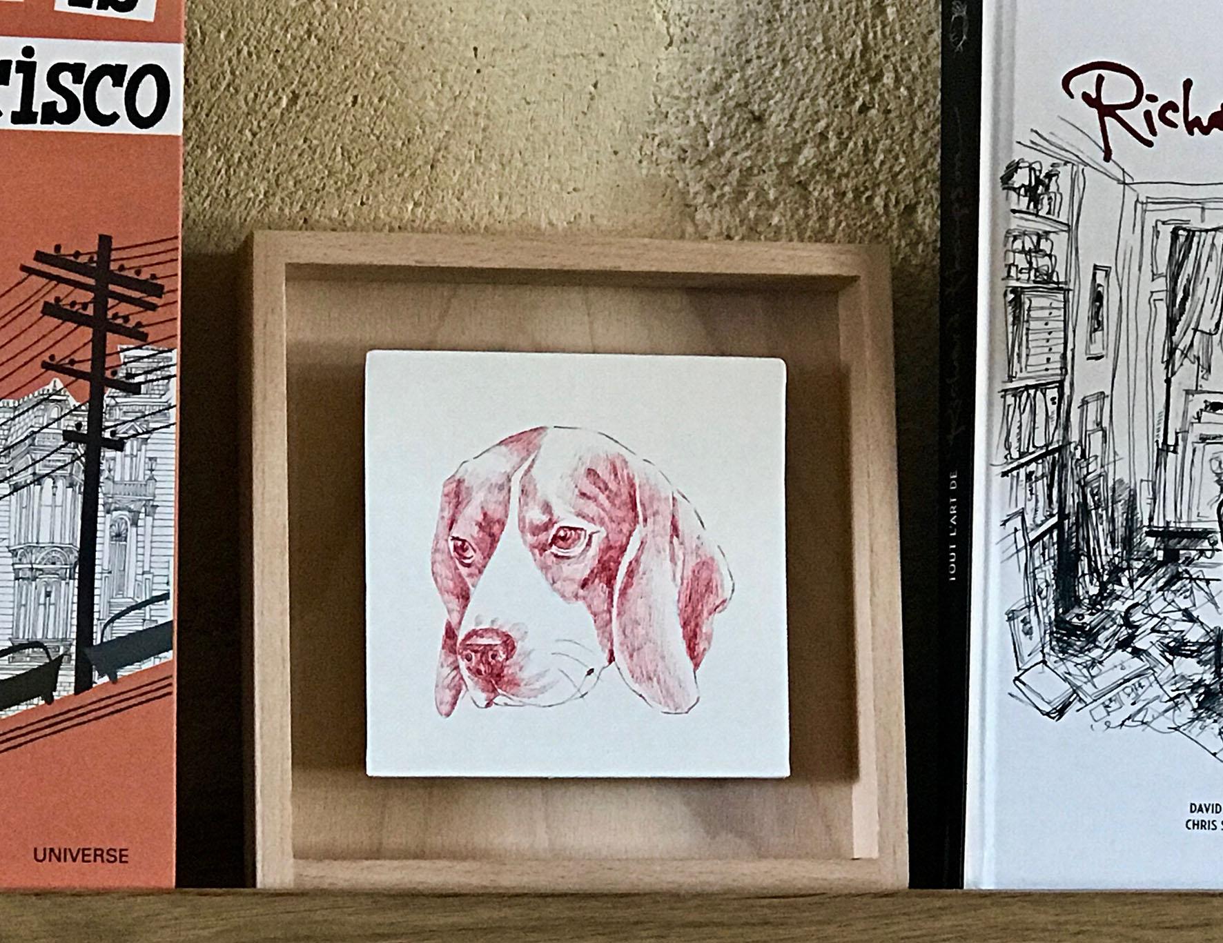 portrait d'un beagle au bic rouge sur étagère